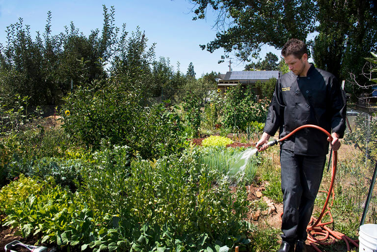 Chef Jeremy watering organic greens Down the Road Farms Peacefield Orchard