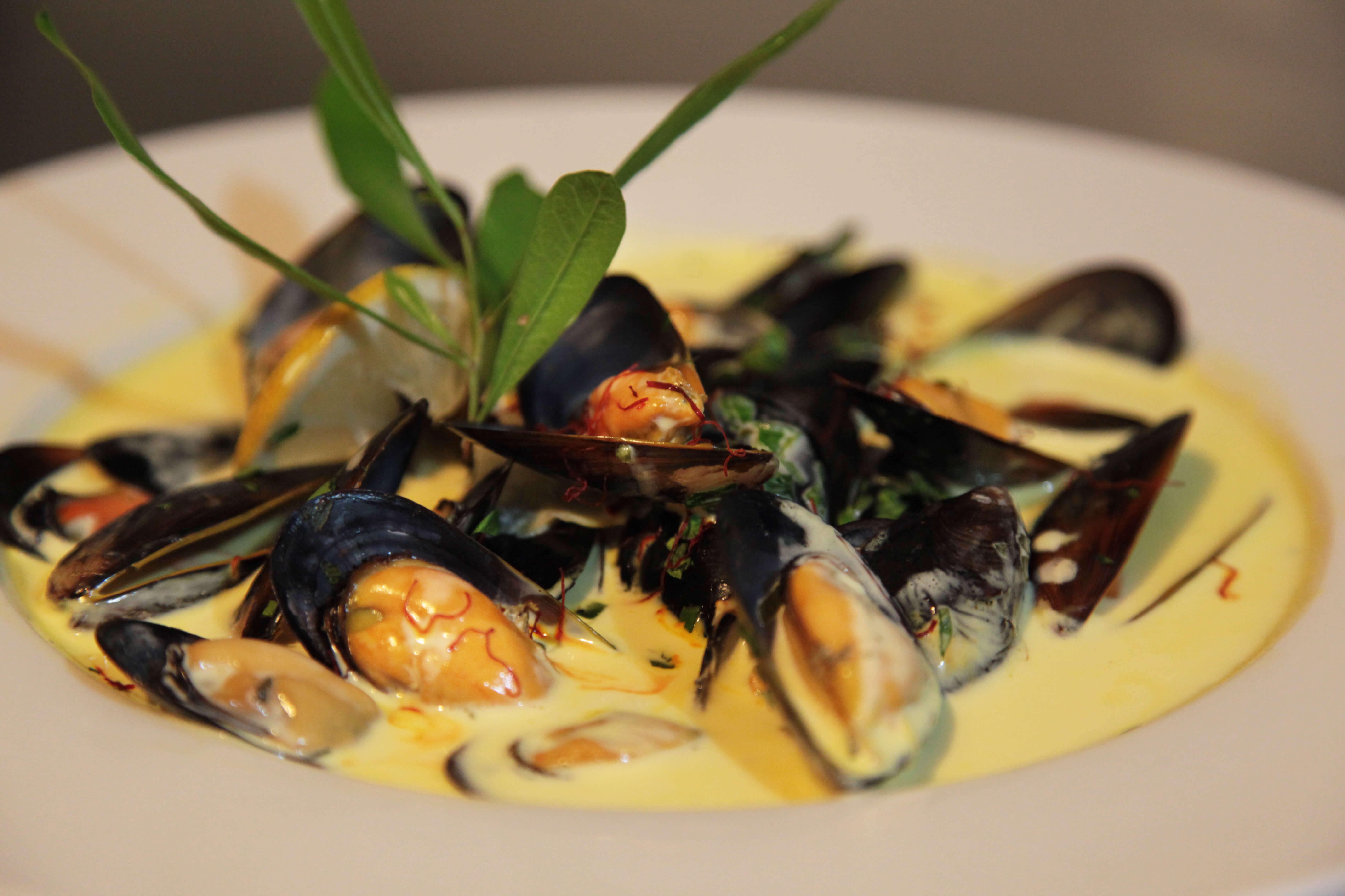 Classic French Mussels in a White Wine Saffron Sauce